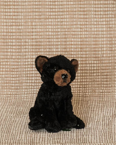 Baby Fresh <br />Black Bear