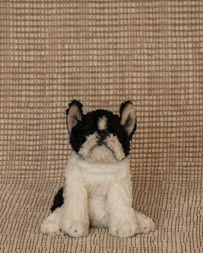 Sugared Magnolia <br /> Small Boston Terrier